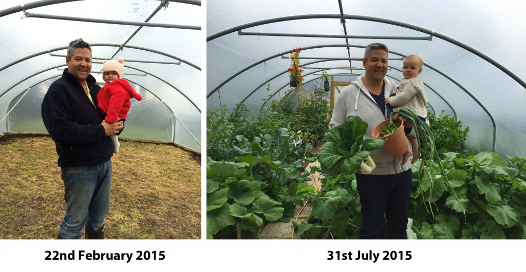 5 months of polytunnel growth