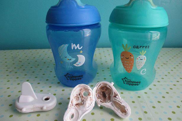 Mould in children's beakers
